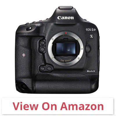 Canon EOS-1DX Mark II - canon camera for wildlife photography