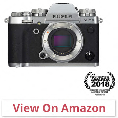 Fujifilm X-T3 - best budget camera for wildlife photography
