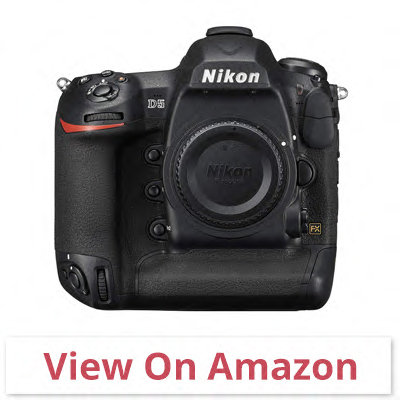 Nikon D5 - best camera for wildlife photography under 500