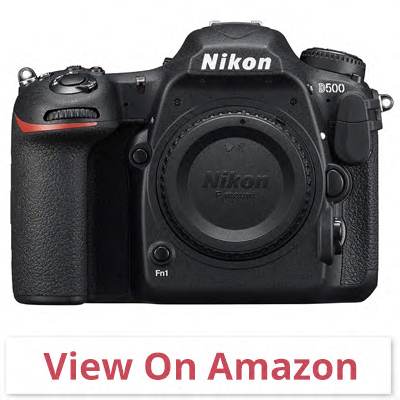 Nikon D500 DX-Format - best point and shoot camera for wildlife photography