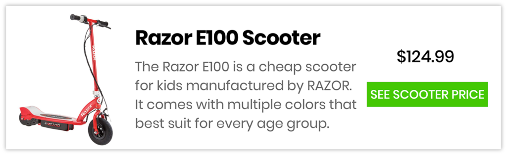 Electric Scooter E100 Price
